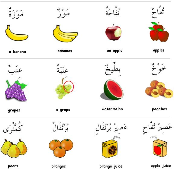 New Vocabulary Baby Food